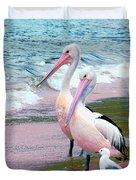 Pelicans At Pearl Beach 5.1 Duvet Cover