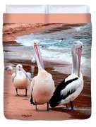 Pelicans At Pearl Beach 5.2 Duvet Cover