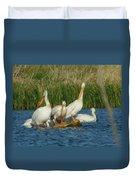 Pelicans Being Pelicans Duvet Cover