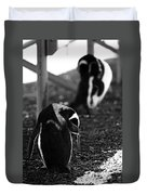 Penguins Under The Boardwalk Duvet Cover
