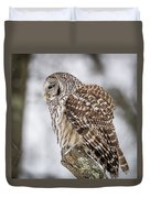 Perched Barred Owl Duvet Cover
