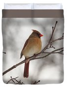 Perched Female Red Cardinal Duvet Cover