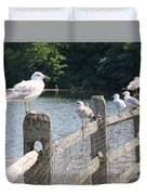 Perched Gulls Duvet Cover