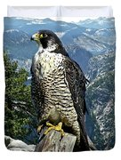 Peregrine Falcon, Yosemite Valley, Western Sierra Nevada Mountain, Echo Ridge Duvet Cover