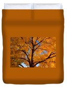 Perfect Autumn Day With Blue Skies Duvet Cover