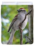 Perfect Profile - Chipping Sparrow Duvet Cover
