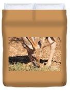 Persian Fallow Deer Duvet Cover