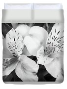 Peruvian Lilies  Flowers Black And White Print Duvet Cover
