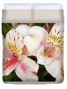 Peruvian Lilies  Flowers White And Pink Color Print Duvet Cover