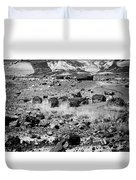 Petrified Forest National Park #2 Duvet Cover
