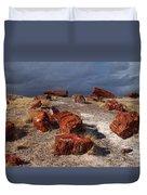 Petrified Forest National Park Duvet Cover