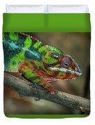 Ambilobe Panther Chameleon Duvet Cover