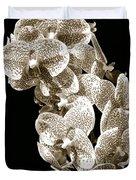 Phalaenopsis Duvet Cover