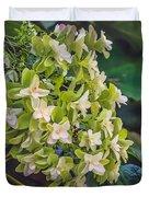 Philipsburg Manor - White Blossom Duvet Cover
