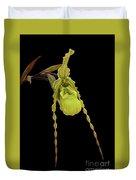 Phragmipedium Richteri Orchid Duvet Cover