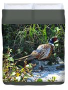 Pheasant Duvet Cover