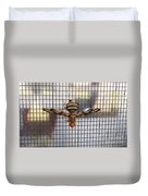 Picture Winged Bee Fly On Screen     Spring      Indiana Duvet Cover