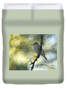 Pied Flycatcher 1 Duvet Cover