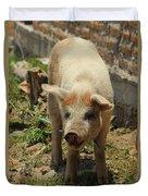 Pig On A Farm Duvet Cover