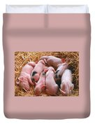 Piglets Duvet Cover