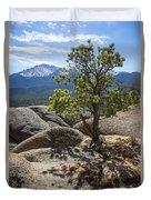 Pikes Peak Bristlecone Duvet Cover