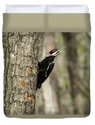 Pileated About To Take Flight Duvet Cover