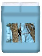 Pileated Billed Woodpecker Pecking 3 Duvet Cover