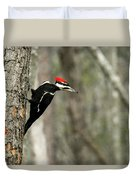 Pileated Woodpecker Looking For A Perspective Mate Duvet Cover