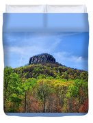 Pilot On A Spring Day Duvet Cover