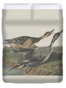 Pin-tailed Duck Duvet Cover