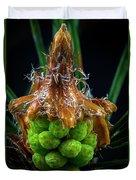 Pine Cone Focus Stack Duvet Cover