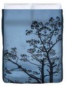 Pine Tree Antigua Guatemala Duvet Cover