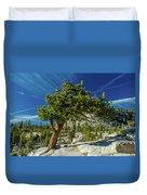 Pine Tree In Yosemite Duvet Cover