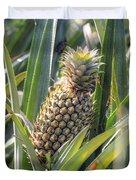 pineapple plantation in Kerala - India Duvet Cover