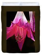 Pink Aglow Duvet Cover