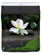 Pink And White Water Lily With Green Pod Duvet Cover