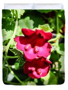 Pink Creeping Gloxinia Duvet Cover