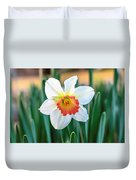 Pink Cup Solo Daffodil Duvet Cover