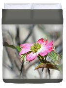 Pink Dogwood Duvet Cover by Kerri Farley