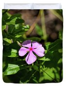 Pink Downy Phlox Wildflower Duvet Cover