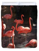 Pink Flamingos  Duvet Cover