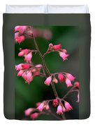 Pink Heuchera Flower 1 Duvet Cover