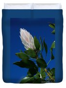 Pink King Protea Kula Maui Hawaii Duvet Cover