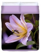 Pink Lilly Duvet Cover