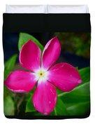 Pink Periwinkle Flower 1 Duvet Cover