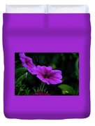 Pink Petunia, Dusk, Hunter Hill, Hagerstown, Maryland, July 25,  Duvet Cover