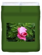 Pink Rose Bud Duvet Cover