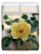Pink Tipped Yellow Rose Duvet Cover
