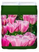 Pink Tulips Aglow Duvet Cover