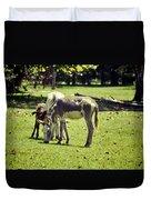 Pinto Donkey I Duvet Cover